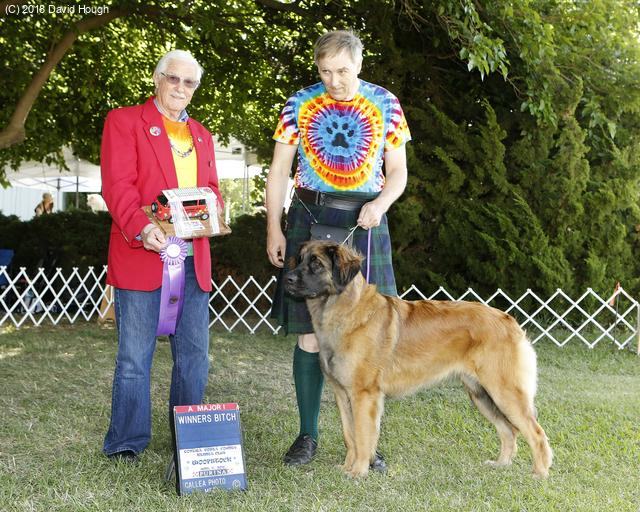 [Faraday winning her first major at Woofstock 2018.]